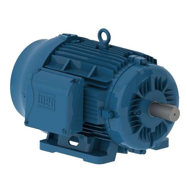 Motor electrico WEG trifasico 00709ET3EM256TW 7.5 Hp 900 RPM 254/6T