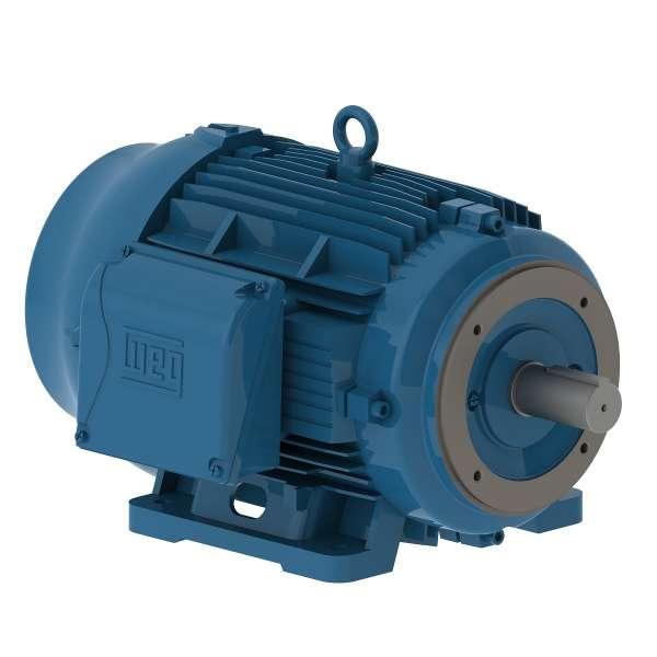 Motor electrico WEG trifasico 01009ET3EM284TCW 10 Hp 900 RPM 284/6TC