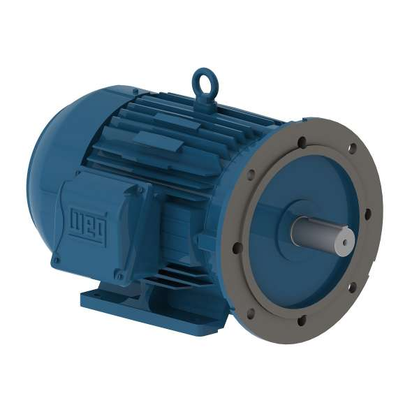 Motor electrico WEG trifasico 00312ET3EM213TDW 3 Hp 1200 RPM 213/5TD